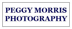 PeggyMorrisPhotog-Conf-Banner